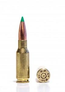 .30 Remington AR