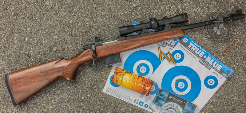 Pseudo Scout Kinda Scout Or Just Scout Rifle Does It