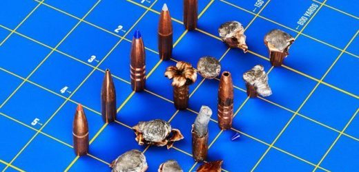 Five Best Long Range Big Game Bullets