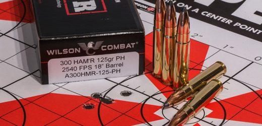 The Wilson Combat 300 HAM'R