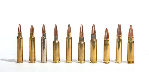 Eight Great General Purpose AR15 Loads