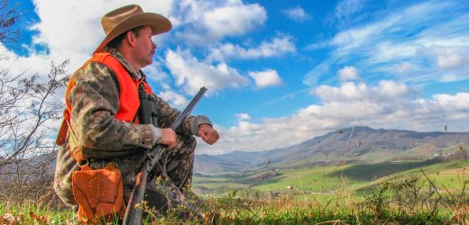 The Hunting Wire – 22 February 2019