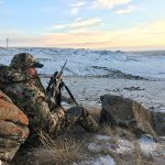 5 Tips for Cold Weather Coyotes