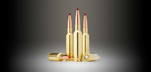 The 6.5 Creedmoor's Rise to the Top