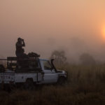 Cowboying-Up in Mozambique