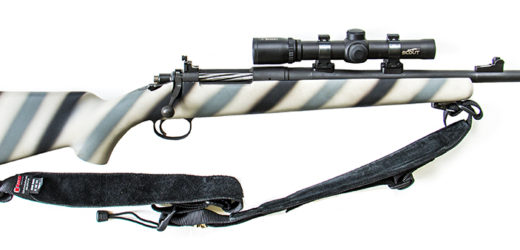 Daily Blog: 12/20/20 (Scout Rifles)